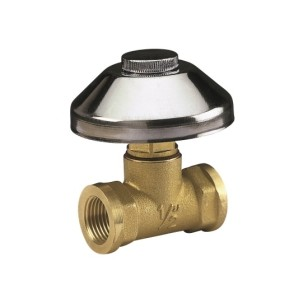 Heavy pattern built-in valve with chromed cap