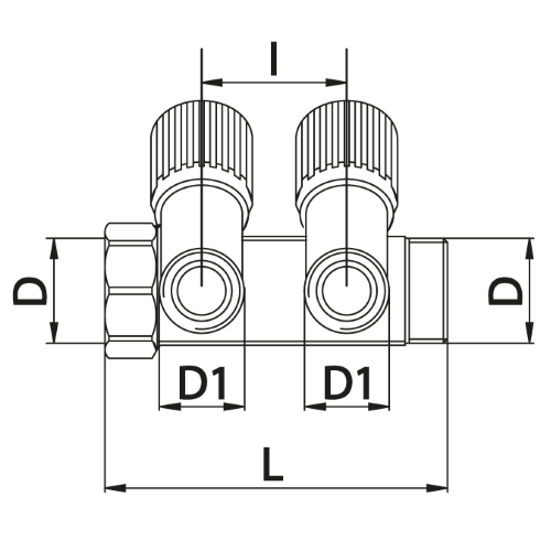 Datasheet - Manifold with 2 male outlets and oblique valve